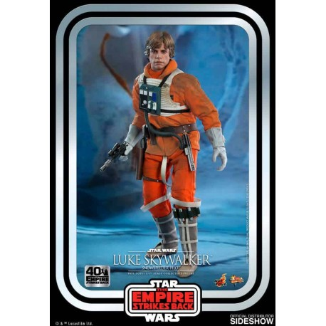 Star Wars Episode V Movie Masterpiece Action Figure 1/6 Luke Skywalker (Snowspeeder Pilot)