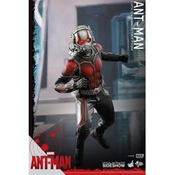 Ant-Man Figura Movie Masterpiece 1/6 Ant-Man