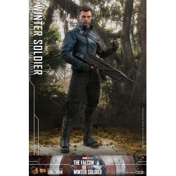 The Falcon and The Winter Soldier Action Figure 1/6 Winter Soldier